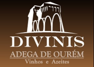 divinis_logo