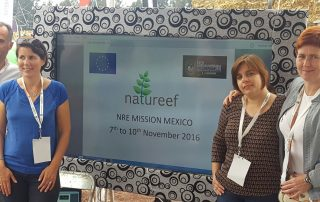 natureef-mexico-3