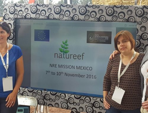 Agrocluster Ribatejo carried out a European project business mission to Mexico