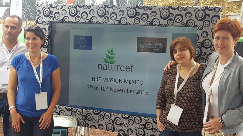 natureef-mexico-3