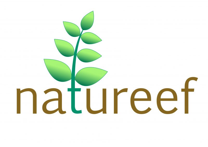 logo-natureef